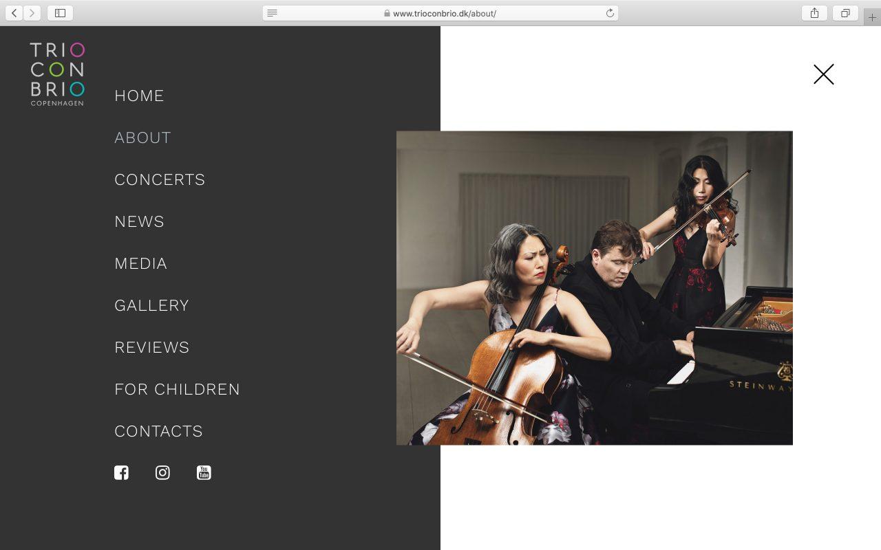 Kilmulis design Trio Con Brio Copenhagen website 03