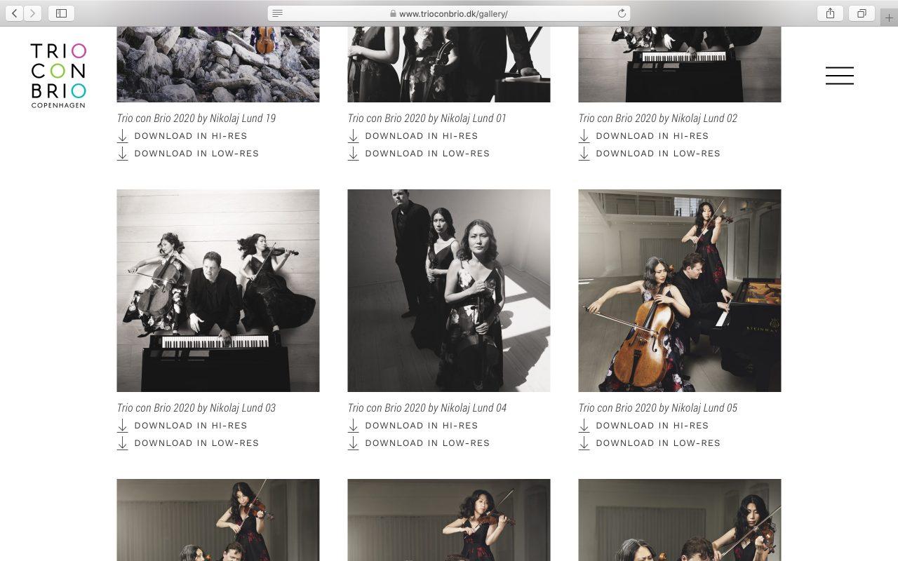 Kilmulis design Trio Con Brio Copenhagen website 06